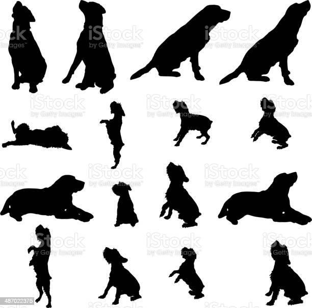Vector silhouette of a dog vector id487022375?b=1&k=6&m=487022375&s=612x612&h=if8dznjrvnwunxgpo7lgr31wudlwfzdgv6kmellxwlc=