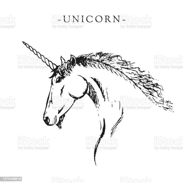 Vector silhouette of a unicorn black and white sketch for a postcard vector id1073408616?b=1&k=6&m=1073408616&s=612x612&h=eu4fl15sk1xdrxghshcn8obal49gw2dk3mzwx fuwpa=