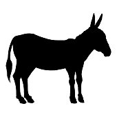 Vector Black Silhouette of Donkey