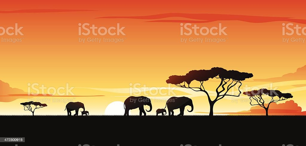 Vector silhouette of elephants and trees on a savannah vector art illustration