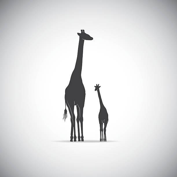Vectores de Familia De Animal y Illustraciones Libre de Derechos ...