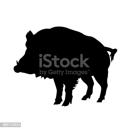 Silhouette of wild boar. Vector illustration isolated on white background