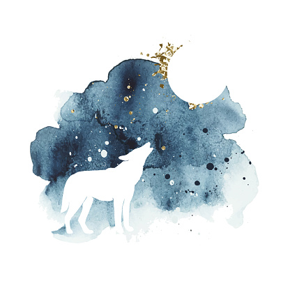 Vector silhouette of wolf howling at the full moon. Watercolor print with isolated animal in dark and golden colors. Night sky. Abstract watercolor vector splash