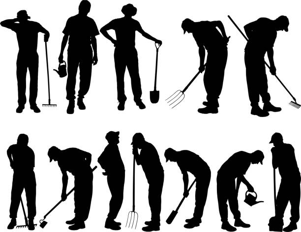 Vector silhouettes of people. Vector silhouettes of people for gardening tools. one senior man only illustrations stock illustrations