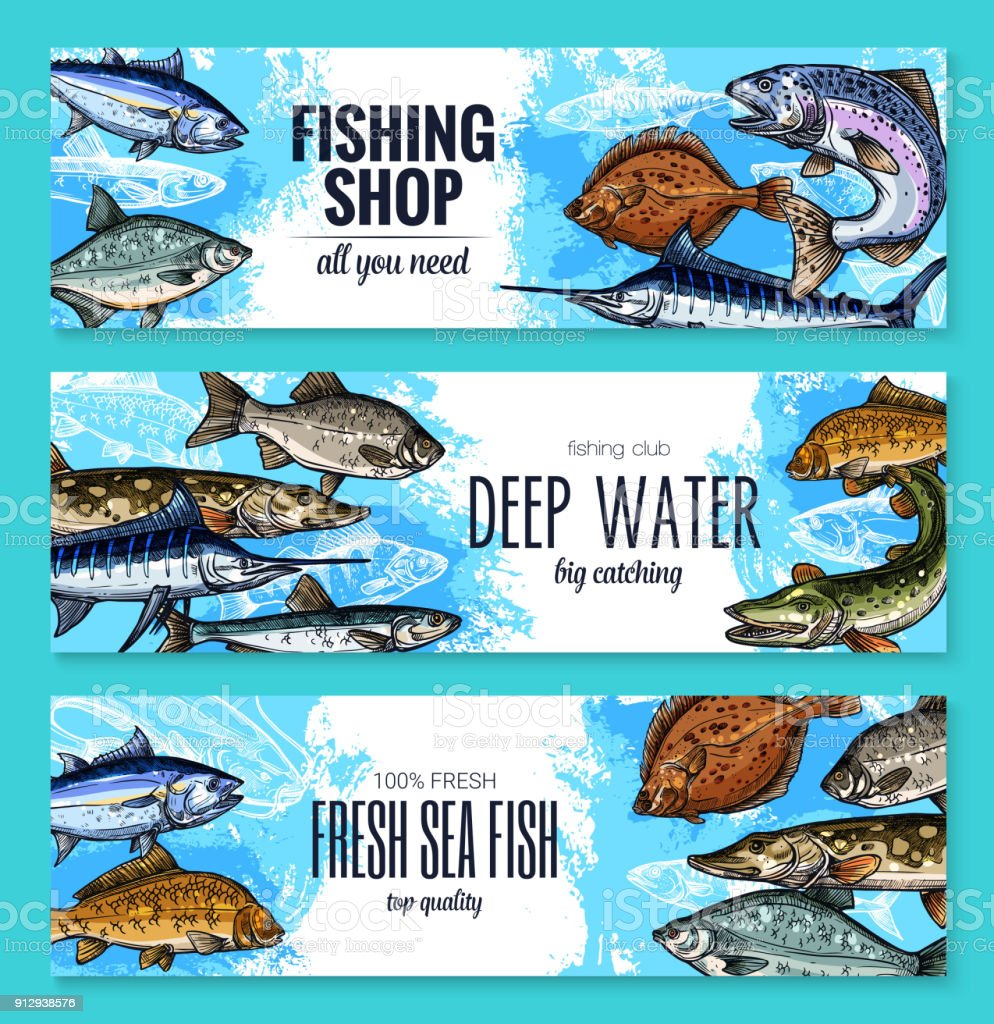Vector sketch banners of fish for fishing shop vector art illustration
