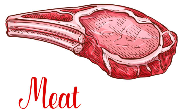 bildbanksillustrationer, clip art samt tecknat material och ikoner med vector skiss nötkött kött klump gård färsk ikon - loin