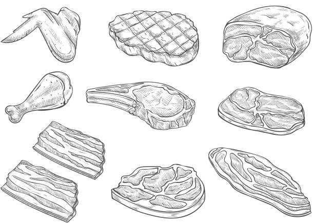 bildbanksillustrationer, clip art samt tecknat material och ikoner med vector skiss slakteri kött kyckling ikoner - fläsk biff kyckling