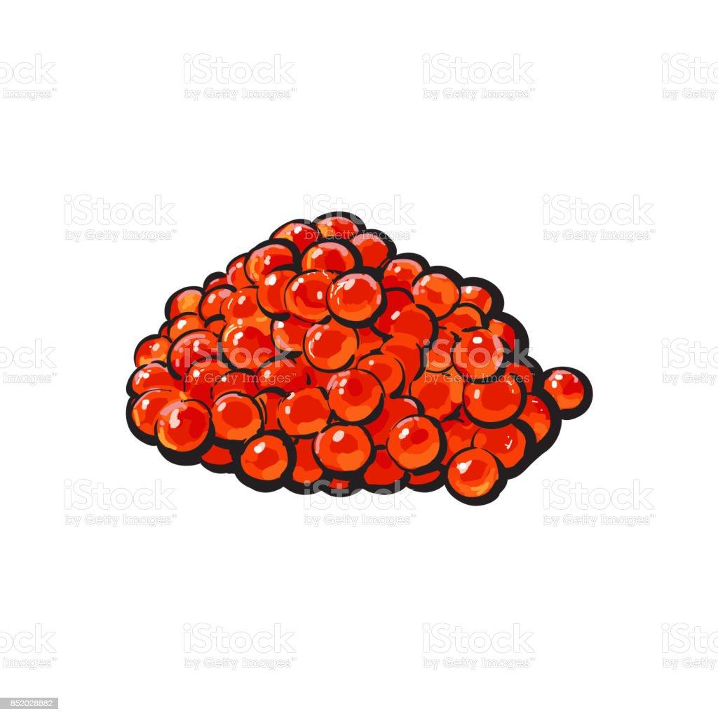 vector sketch cartoon red salmon caviar vector art illustration