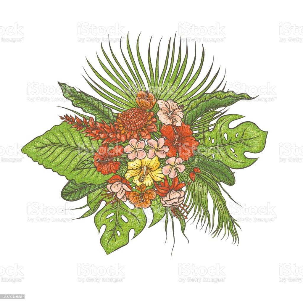 Ilustracion De Dibujo Vector Color Textura Composicion Set Bouquet