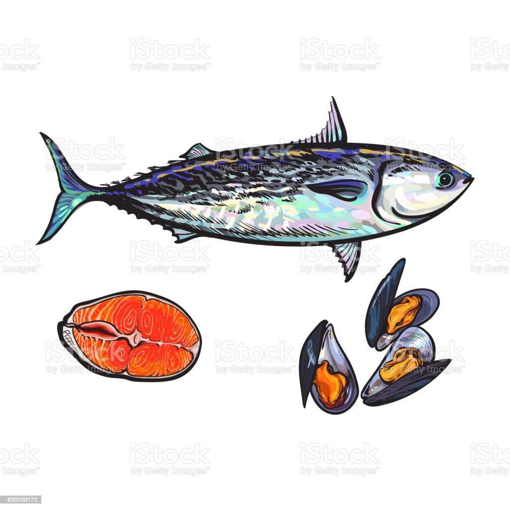 Ilustración de Vector De Dibujo Pescado Atún Filete De Salmón ...