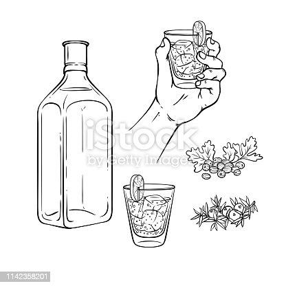 Vector tequila, gin tonic or vodka concept sketch monochrome icon set. Hand holding glass shot toasting, empty bottle, coriander seeds with leaves. Hand drawn alcohol elements for restaurant, bar menu