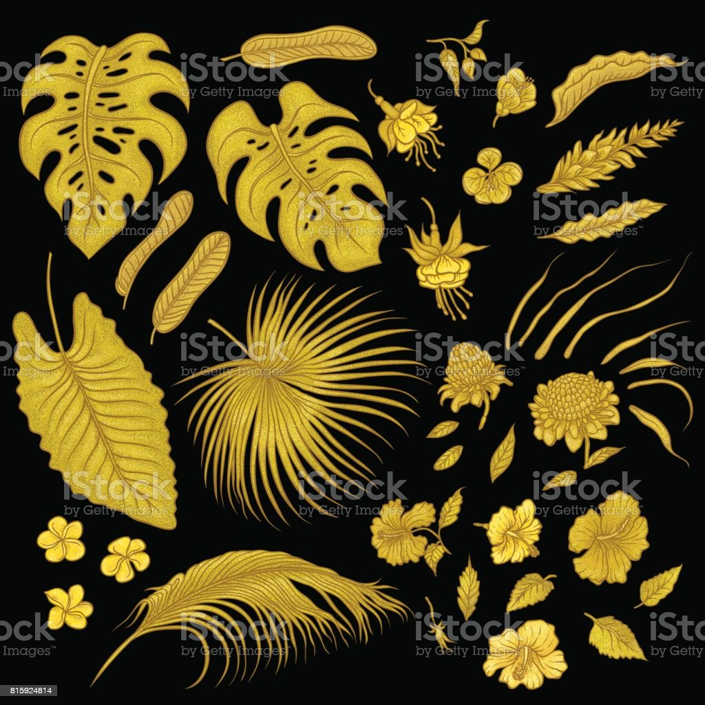 Vector sketch golden texture set of isolated elements. Gold shiny leaves of tropical plants, exotic flowers buds. Graphic outline drawing collection goldish herb and vegetation monsoon rainforest. vector art illustration