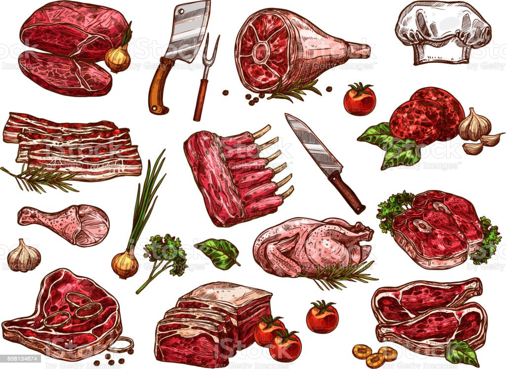 Vector sketch icons of fresh butchery meat vector art illustration