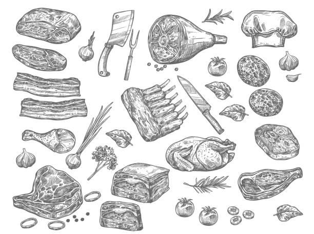 bildbanksillustrationer, clip art samt tecknat material och ikoner med vector skiss ikoner av kött för butchery shop - fläsk biff kyckling