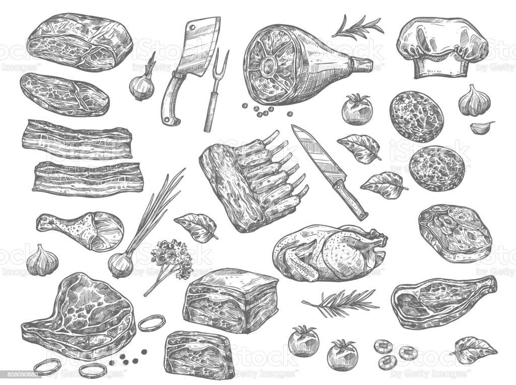 Vector sketch icons of meat for butchery shop vector art illustration