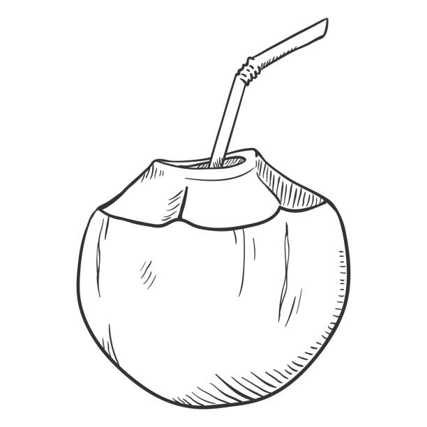 Royalty Free Drawing Of Coconut Water Clip Art Vector Images