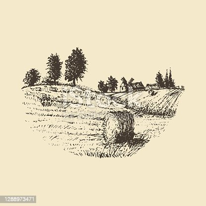 Countryside meadow, hand drawn illustration. Vector sketch of a rural landscape with a farm and a mowed field.