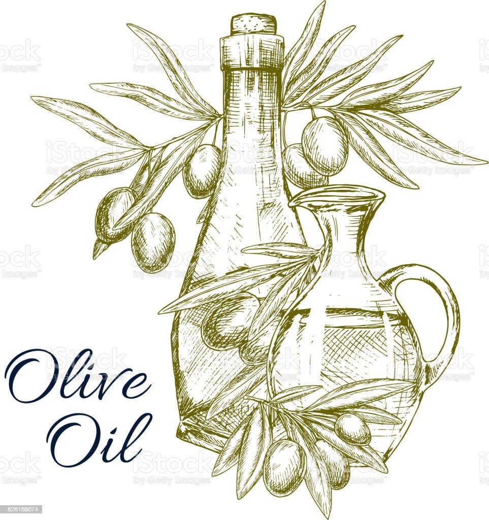 Vector sketch poster of olives and olive oil - ilustração de arte vetorial