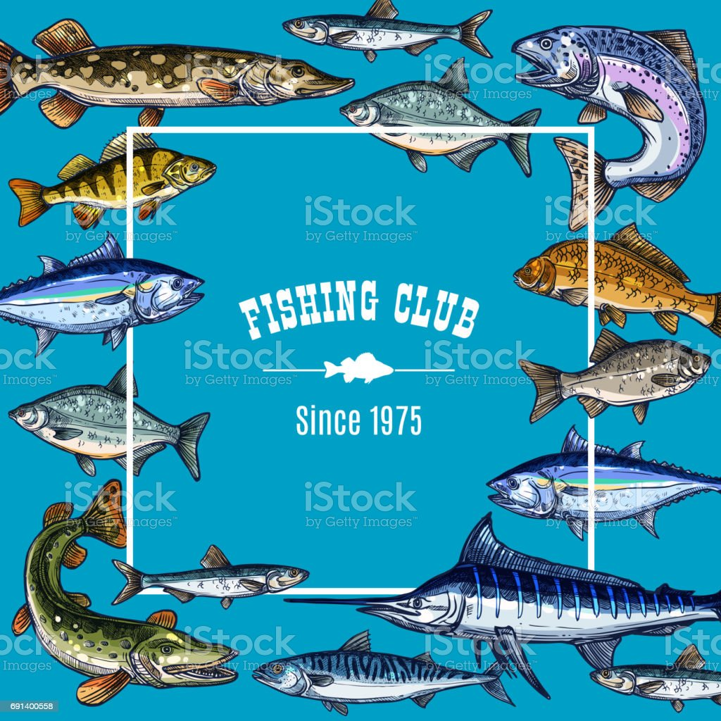 Vector sketch poster template for fishing club vector art illustration