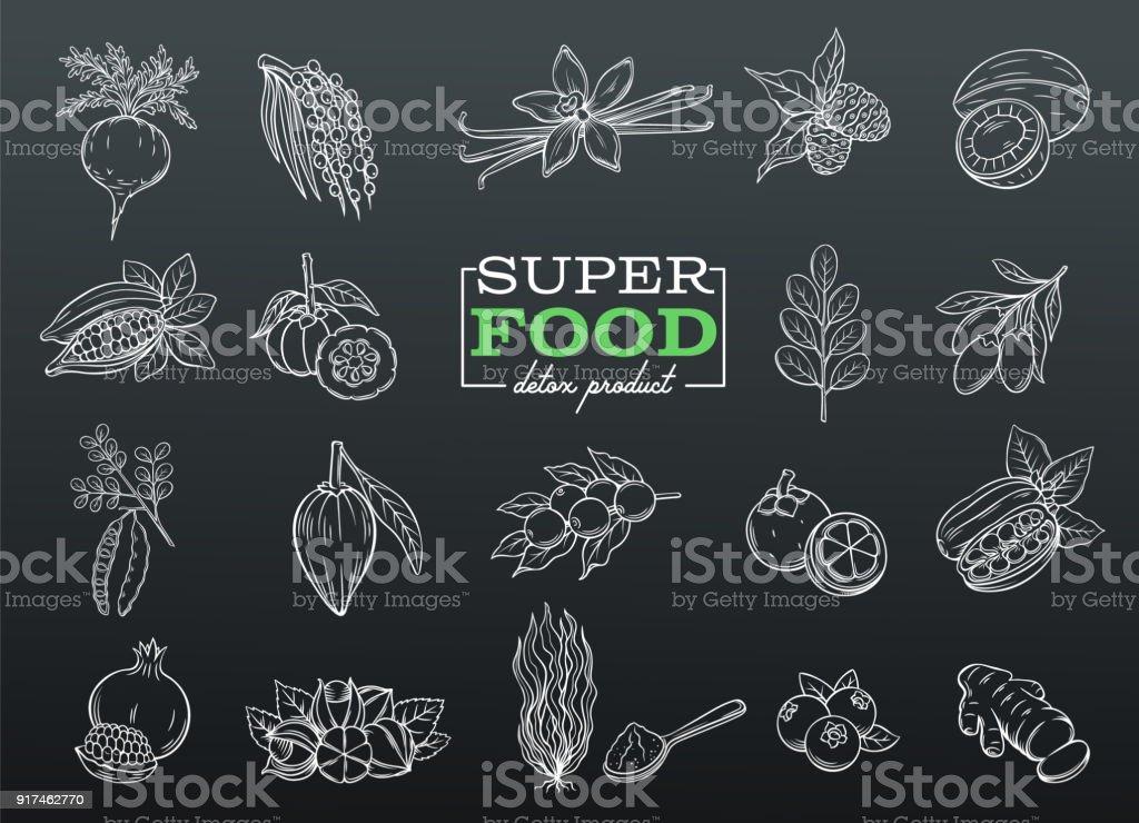 Súper alimento de dibujo vectorial - ilustración de arte vectorial
