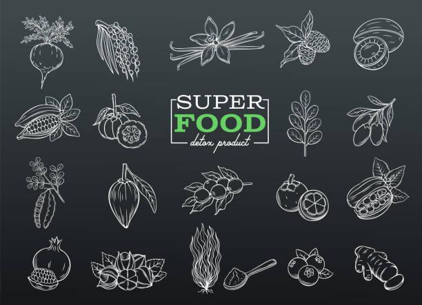 illustrations, cliparts, dessins animés et icônes de super dessin vectoriel - antioxydant