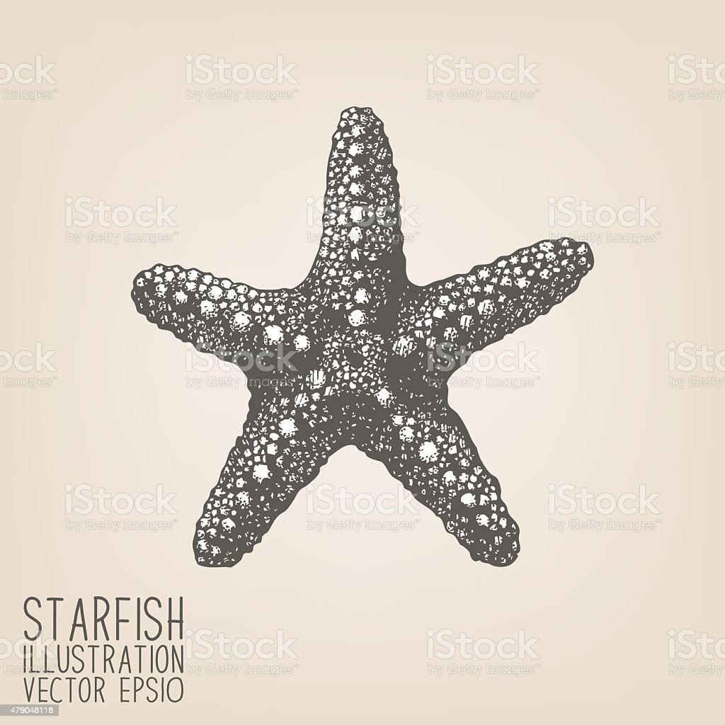 Vector sketch with hand drawn sea star vector art illustration