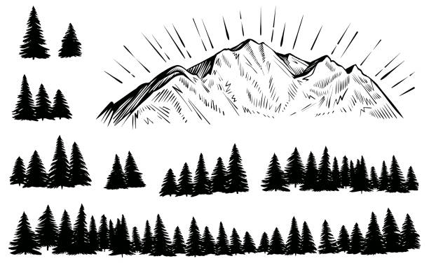 Vector sketched mountain with forest silhouette with sun rays. Vector mountain with forest silhouette. Sketch rocky peak with sun rays and pine trees. adventure drawings stock illustrations