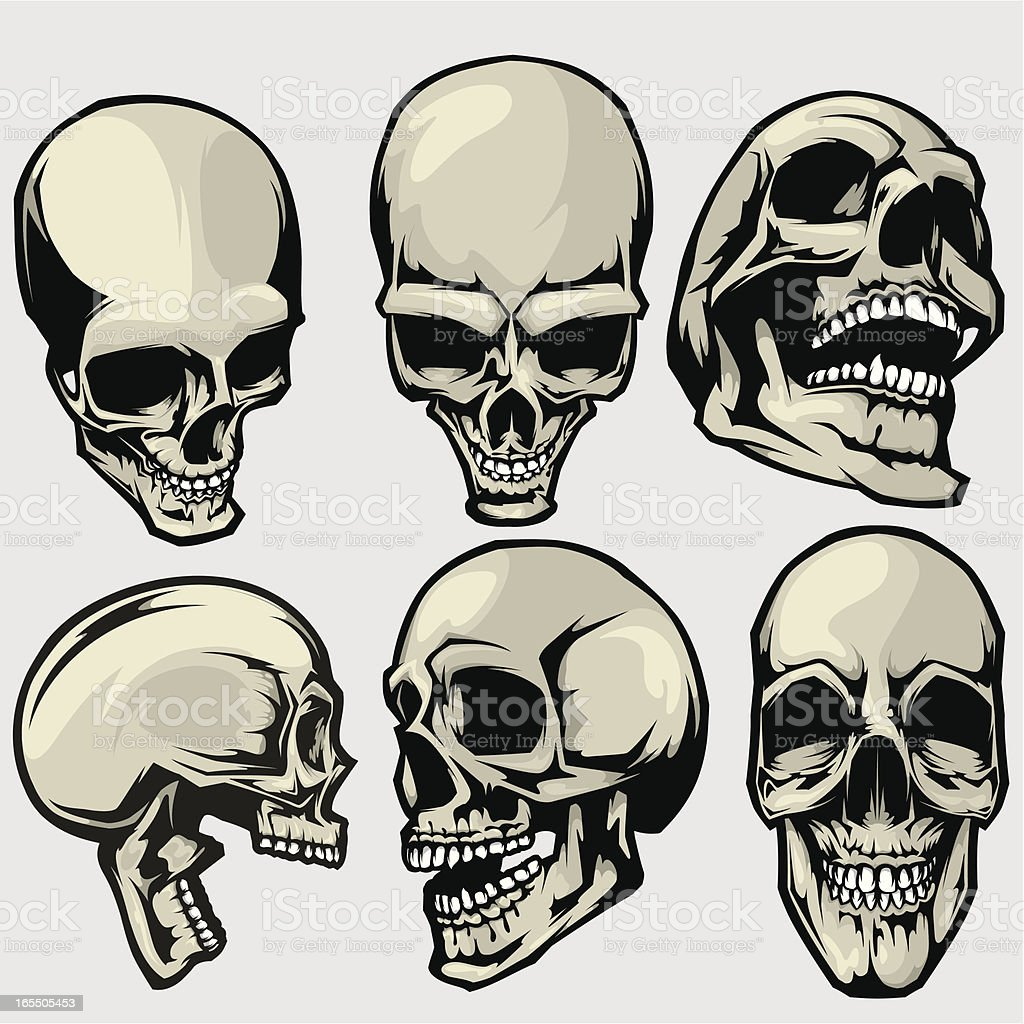 vector skull collection royalty-free vector skull collection stock vector art & more images of anatomy