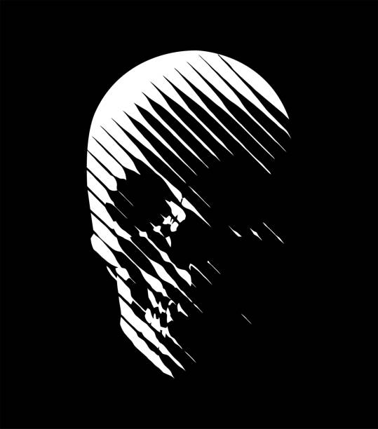 Vector skull line-art Stylized human skull front view, made by diagonal lines. White lines on black background. drawn death stock illustrations