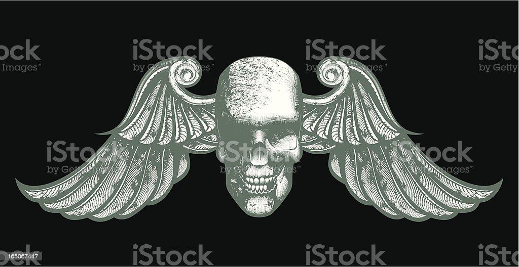 vector skull royalty-free vector skull stock vector art & more images of anatomy