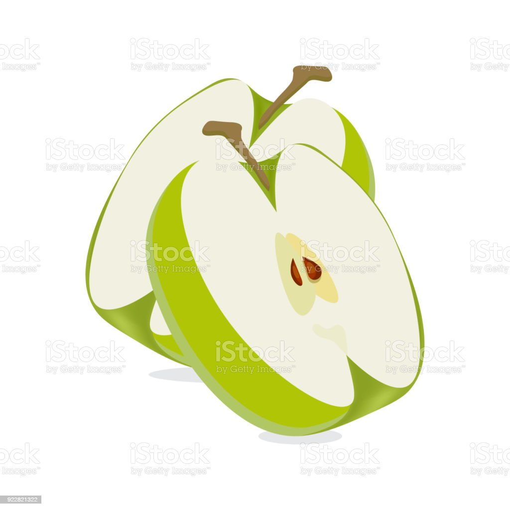 Vector slices or cuts of a granny smith apple isolated vector art illustration
