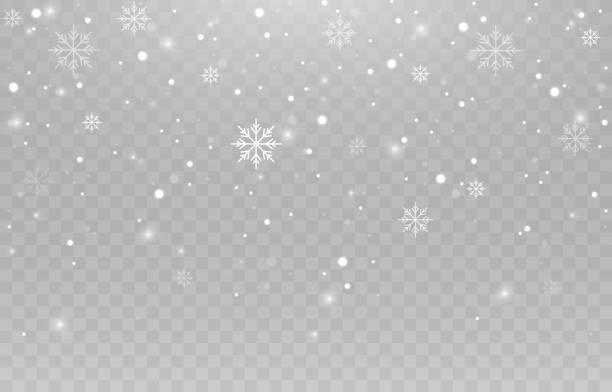 ilustraciones, imágenes clip art, dibujos animados e iconos de stock de copos de nieve vectoriales. lluvias, nieve. copos de nieve sobre un fondo aislado. nieve png. tormenta de nieve, nieve navideña. imagen vectorial. - nieve
