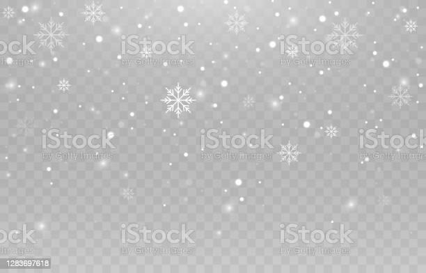 Vektorschneeflocken Schneefall Schnee Schneeflocken Auf Einem Isolierten Hintergrund Png Schnee Schneesturm Weihnachtsschnee Vektorbild Stock Vektor Art und mehr Bilder von Fallen