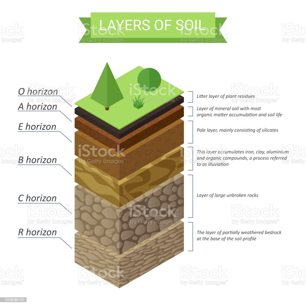 Vector Soil Layers Isometric Diagram Underground Soil Layers Diagram Stock Illustration