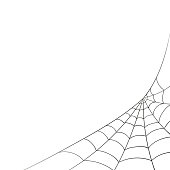 Vector Spiderweb on a White Background