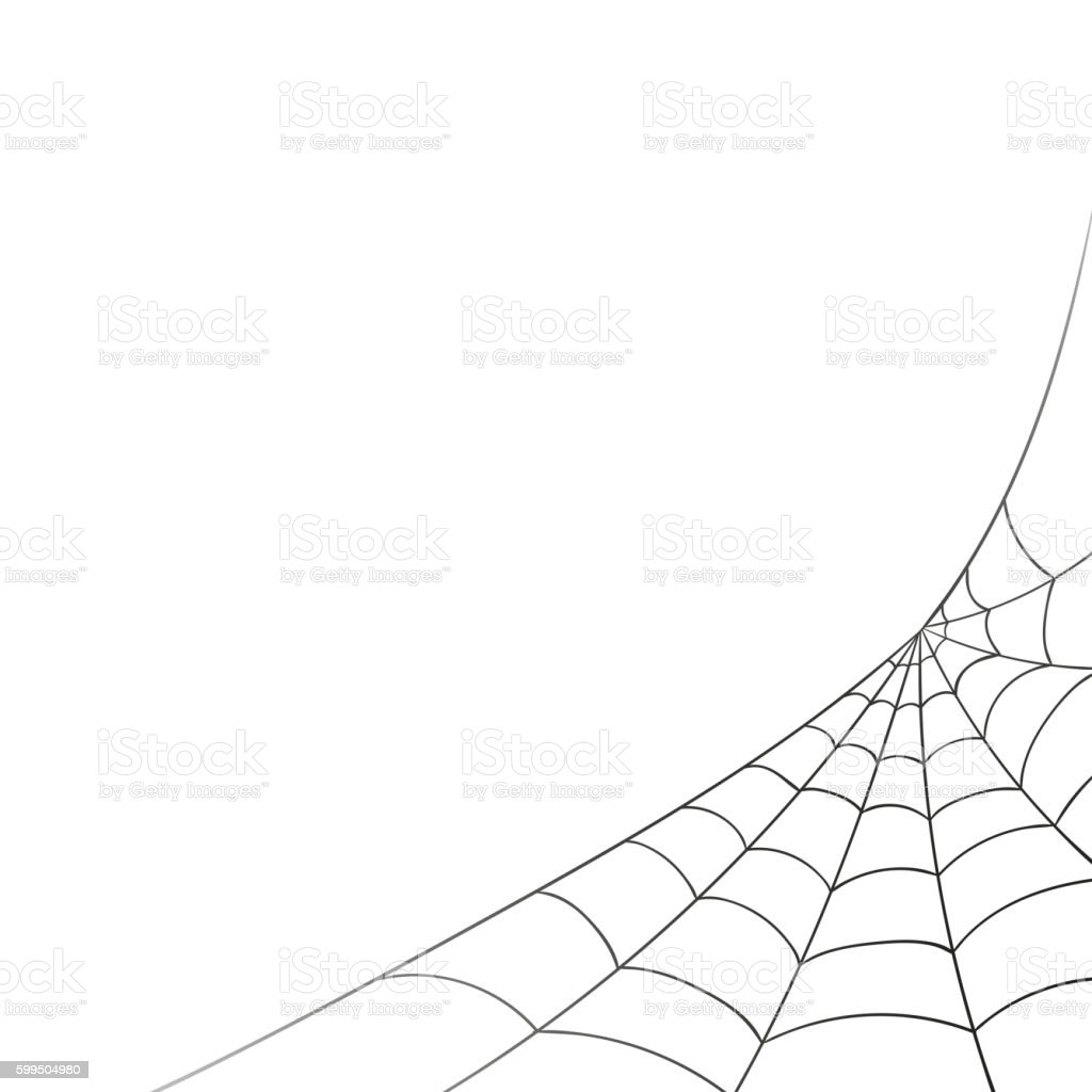 Vector Spiderweb on a White Background vector art illustration