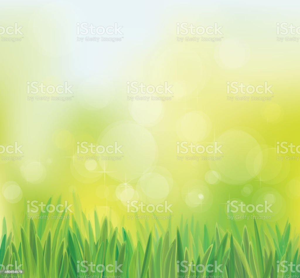 Vector spring background with grass. vector art illustration