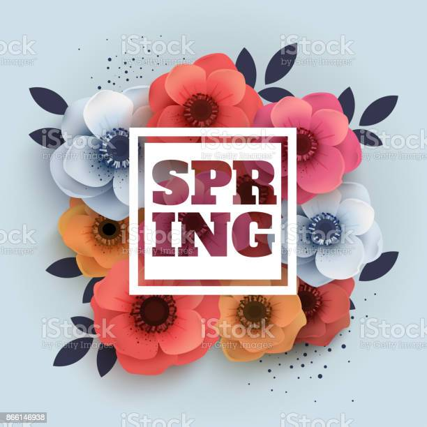 Vector spring banner with the text and paper flowers anemones vector id866146938?b=1&k=6&m=866146938&s=612x612&h=jduiximn j7vn6i3bnsgvrrns9gugteuipmtbjrsbyu=
