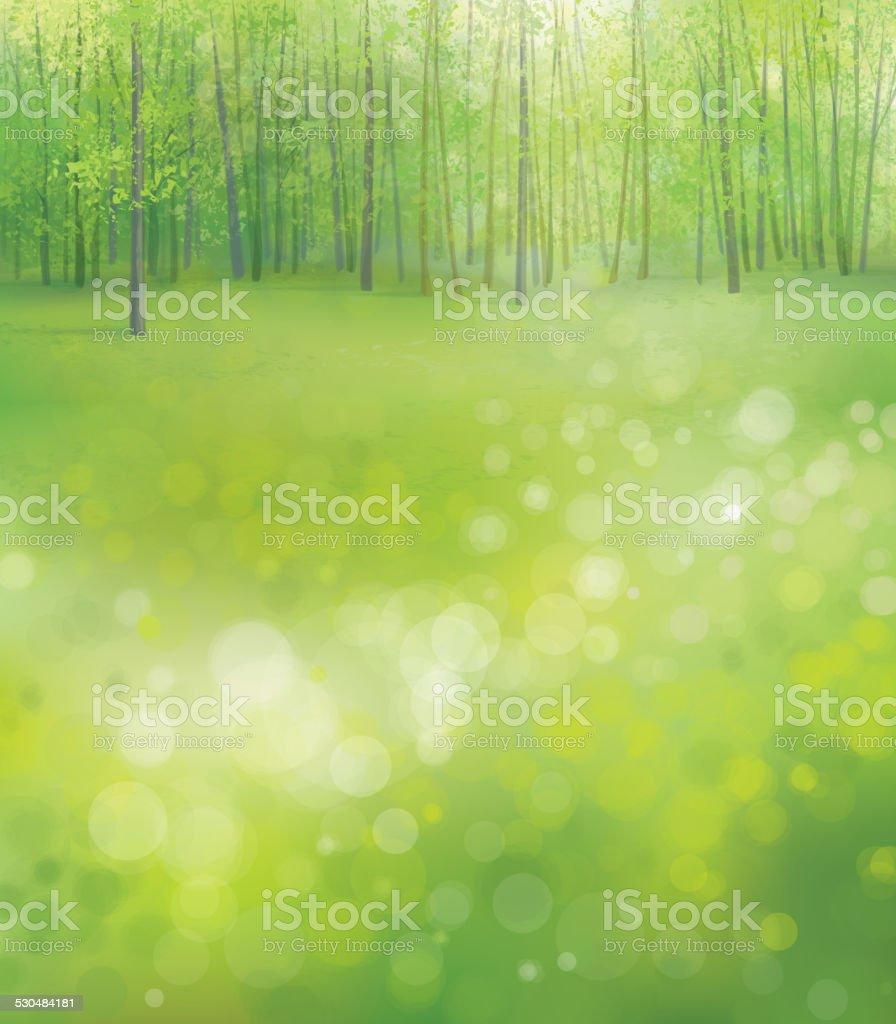 春の森の背景のベクトルします のイラスト素材 530484181 | istock