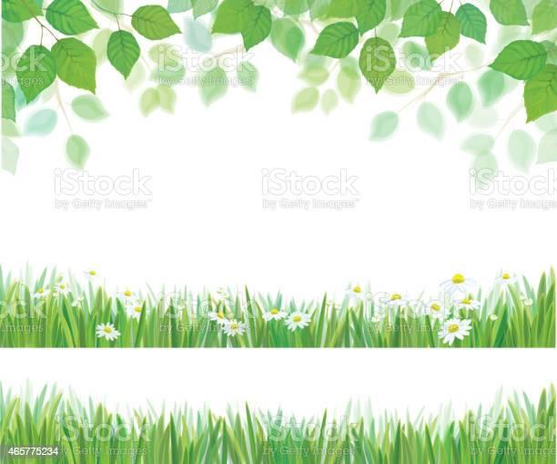 Vector spring leaves grass and daisy flowers borders isolated vector id465775234?b=1&k=6&m=465775234&s=612x612&h=pucplbnehhcu90arlkpdowywqxavmscym4 fla7emo0=