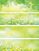 Background is my creative handdrawing and you can use it for spring, summer, Easter design and etc, made in vector, Adobe Illustrator 10 EPS file, transparency effects used in file.