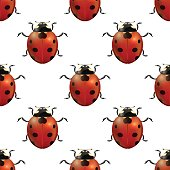 Vector spring seamless pattern witg realistic ladybugs