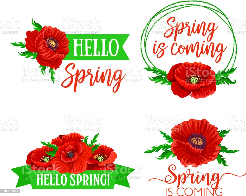 Vector Spring Time Flowers And Quotes Bouquets stock vector art ...