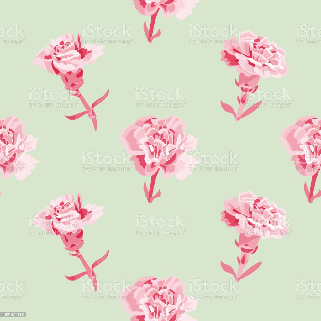 Vector square floral seamless pattern with carnation, red, pink flowers, buds, stems, leaves on green background, digital draw illustration, vintage vector art illustration