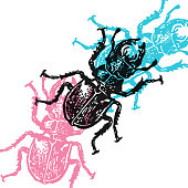 Vector stag-beetles in abstract composition.