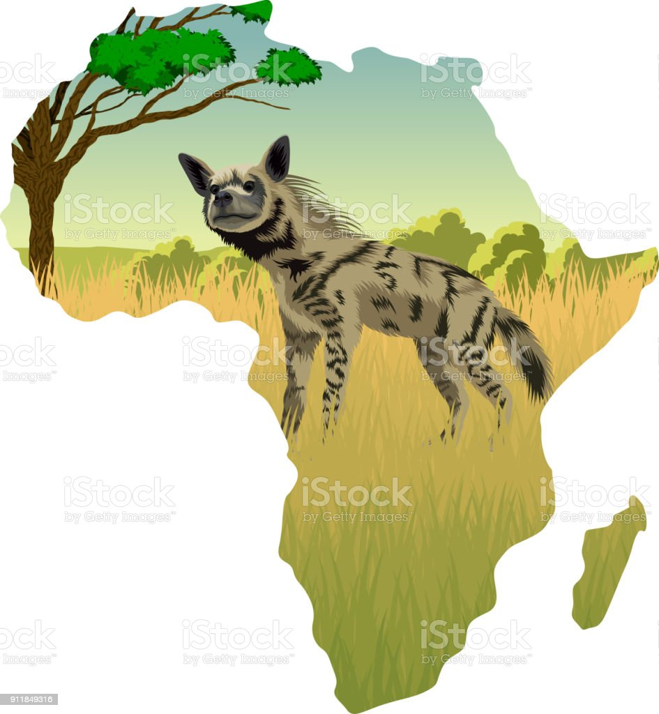 vector striped hyena