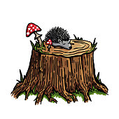 Vector stump in the forest with hedgehog and fly agarics