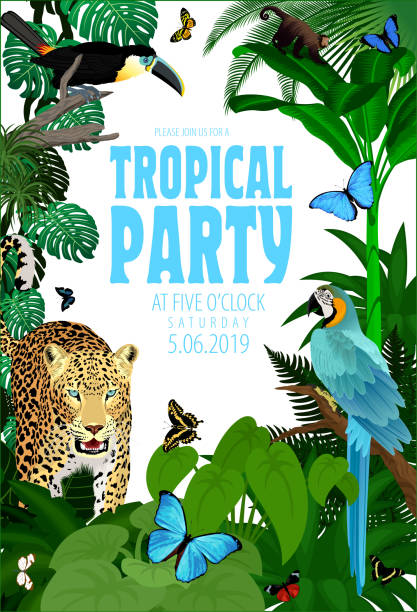 Vector Summer Rainforest Jungle Tropical Beach Party Flyer Design Card with Toucan, macaw, jaguar and buterflies Vector Summer Rainforest Jungle Tropical Beach Party Flyer Design Card with Toucan, macaw, jaguar and buterflies exotic animals stock illustrations