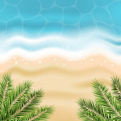 Vector summer sea background with sandy beach, ocean water and palm leaves