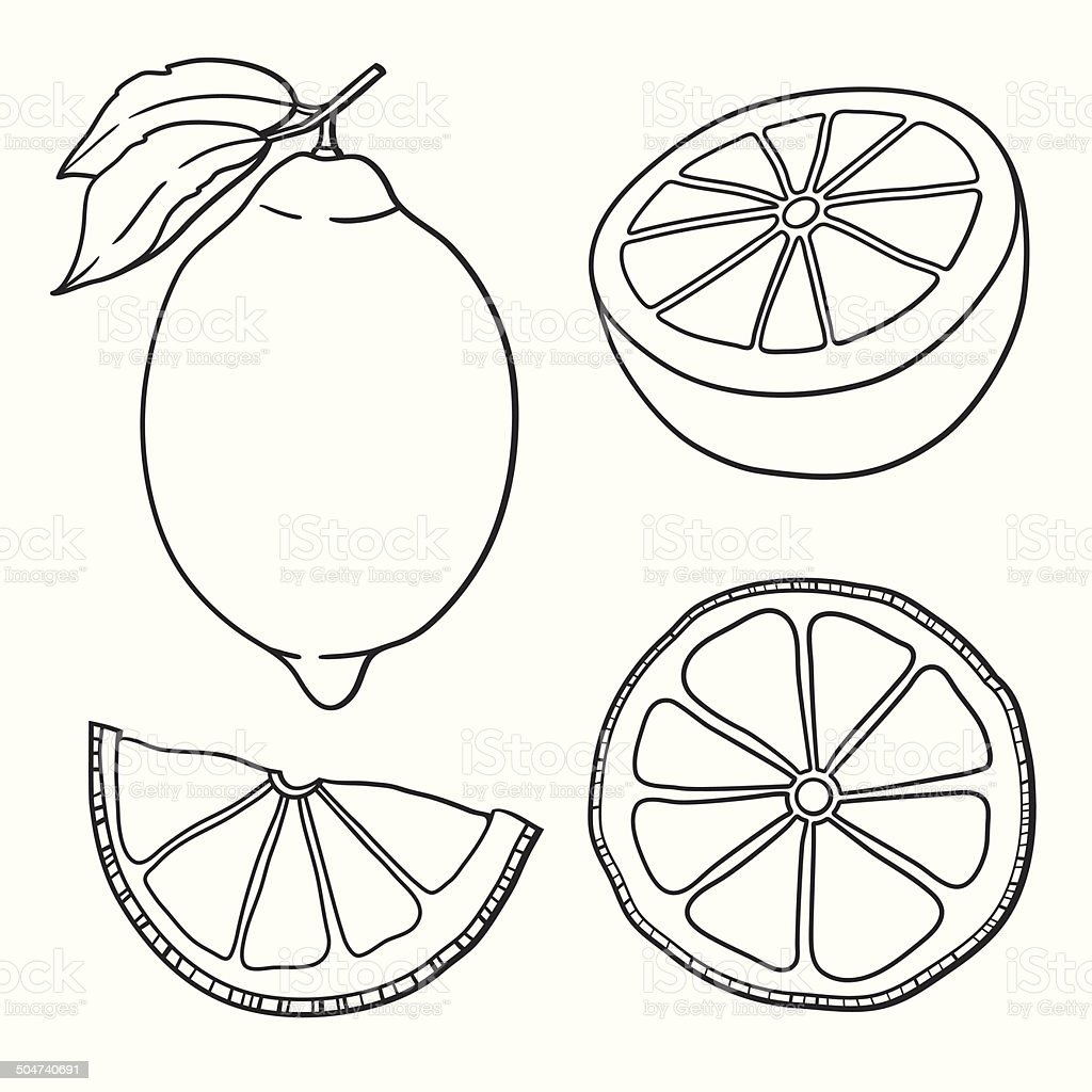 Isolated lemons graphic stylized drawing stock vector art - Dessin citron ...